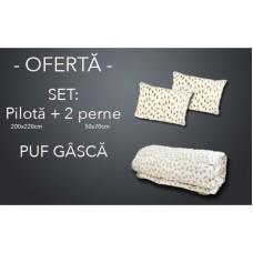 SET Pilota de iarna pentru pat de doua persoane + 2 perne dreptunghiulare din puf de gasca cod PG11